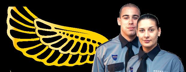 defender-wing